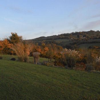 Autumn colours at South kelding