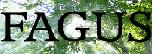 Fagus Gardening