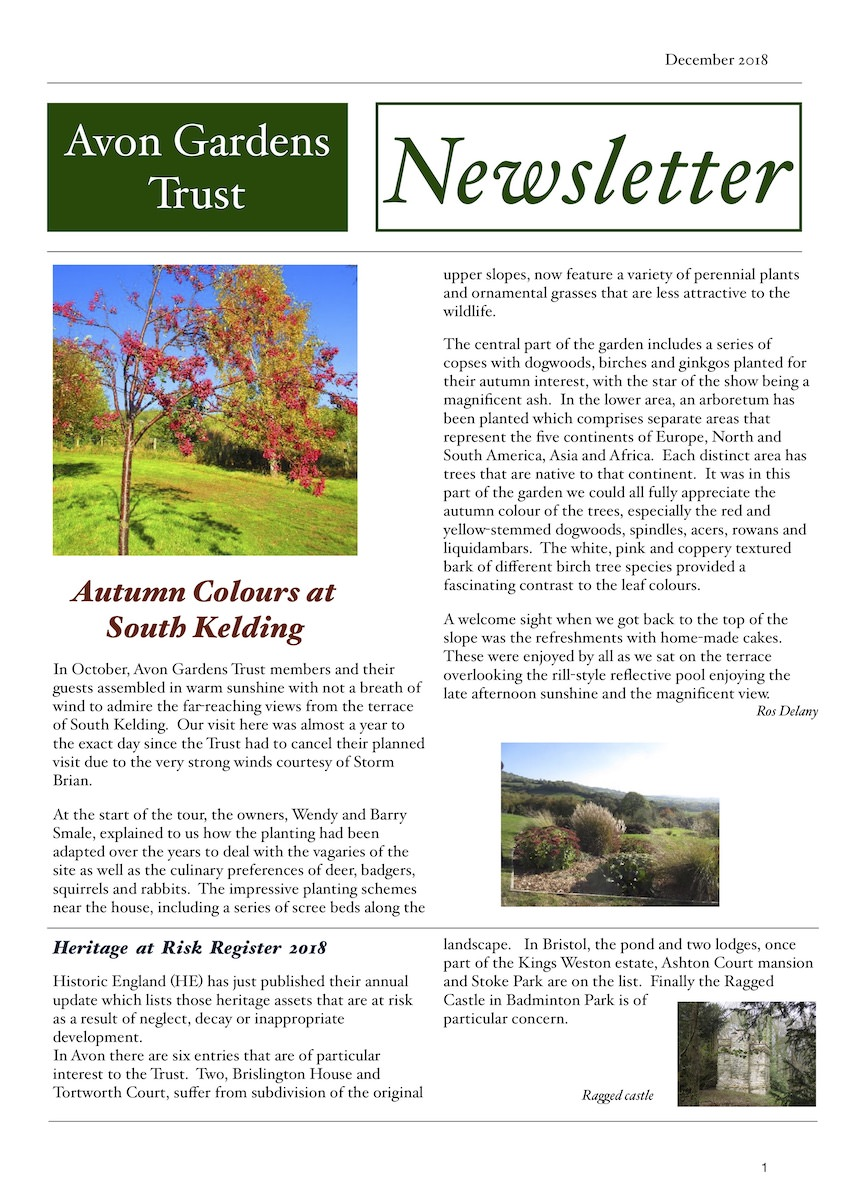 cover of the 2018 December Newsletter