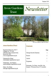 Cover page of Summer 2019 Newsletter