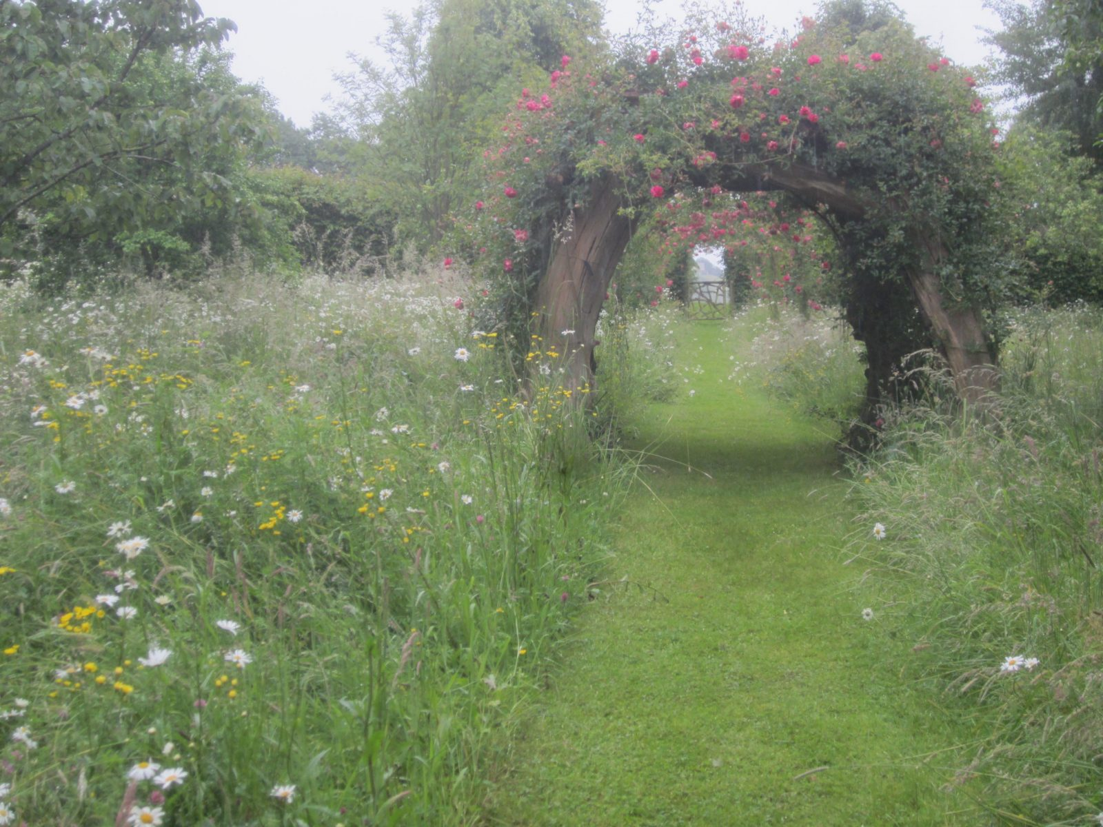 Visit to the Garden of Wortley House